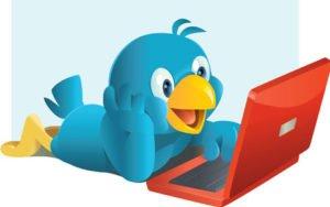 twitter-user